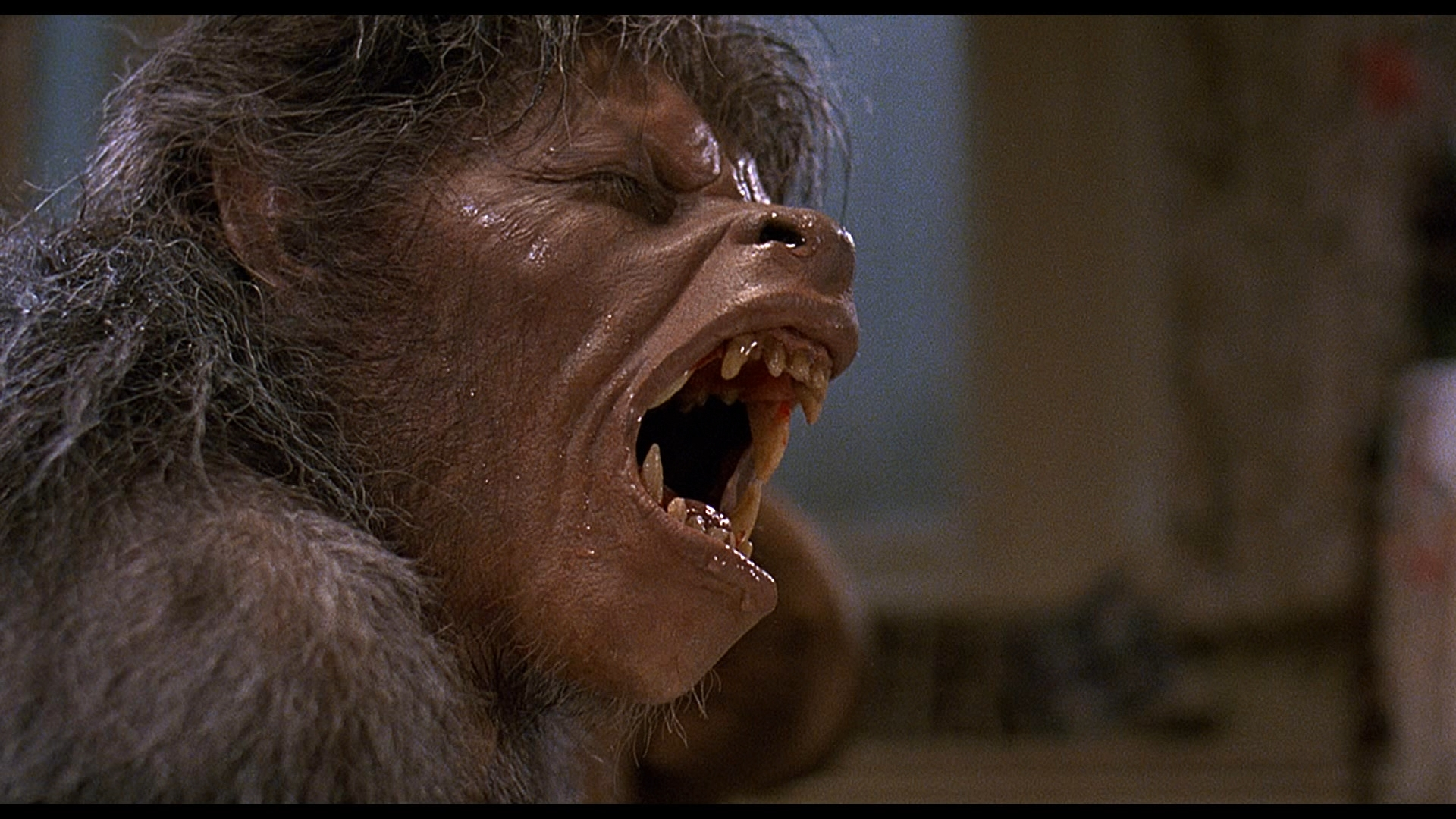 John Landis American Werewolf In London Sequel Revealed The